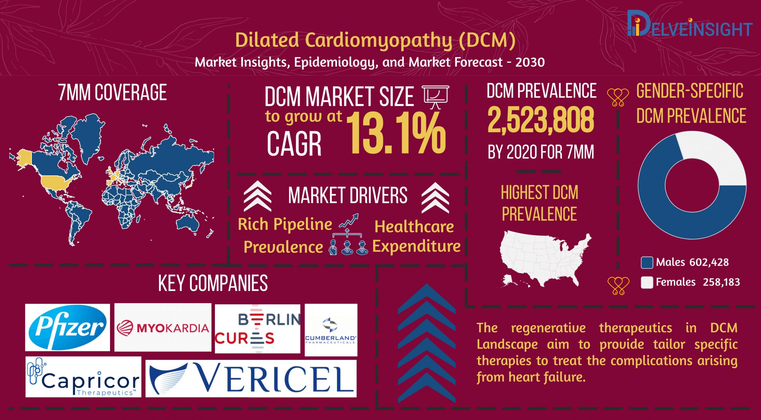 Dilated Cardiomyopathy Market | DCM Market