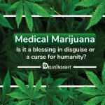 Medical Marijuana Market | Medical Cannabis Market