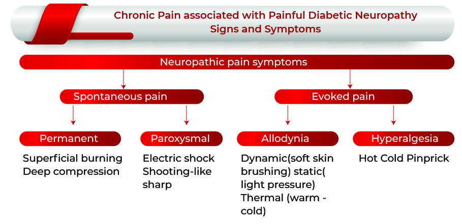 Chronic Pain Associated With Painful Diabetic Neuropathy: Signs and Symptoms | Chronic Pain Associated With Painful Diabetic Neuropathy Market