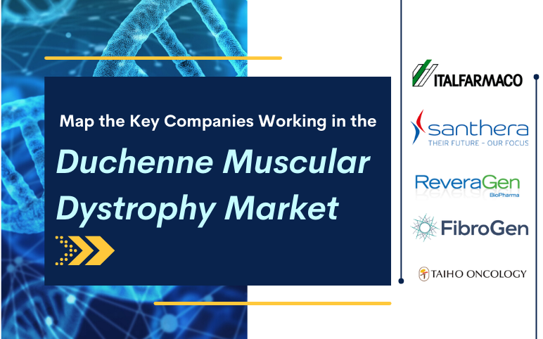 duchenne-muscular-dystrophy-market-size-share-trends-companies-cagr-growth-therapy-treatment-therapeutics